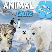 Play Game : Animal Quiz