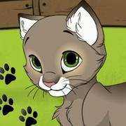 Play Game : My Kitten