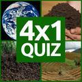 4×1 Imagen Quiz
