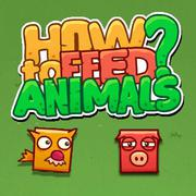 Play Game : How To Feed Animals
