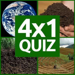 4x1 Picture Quiz